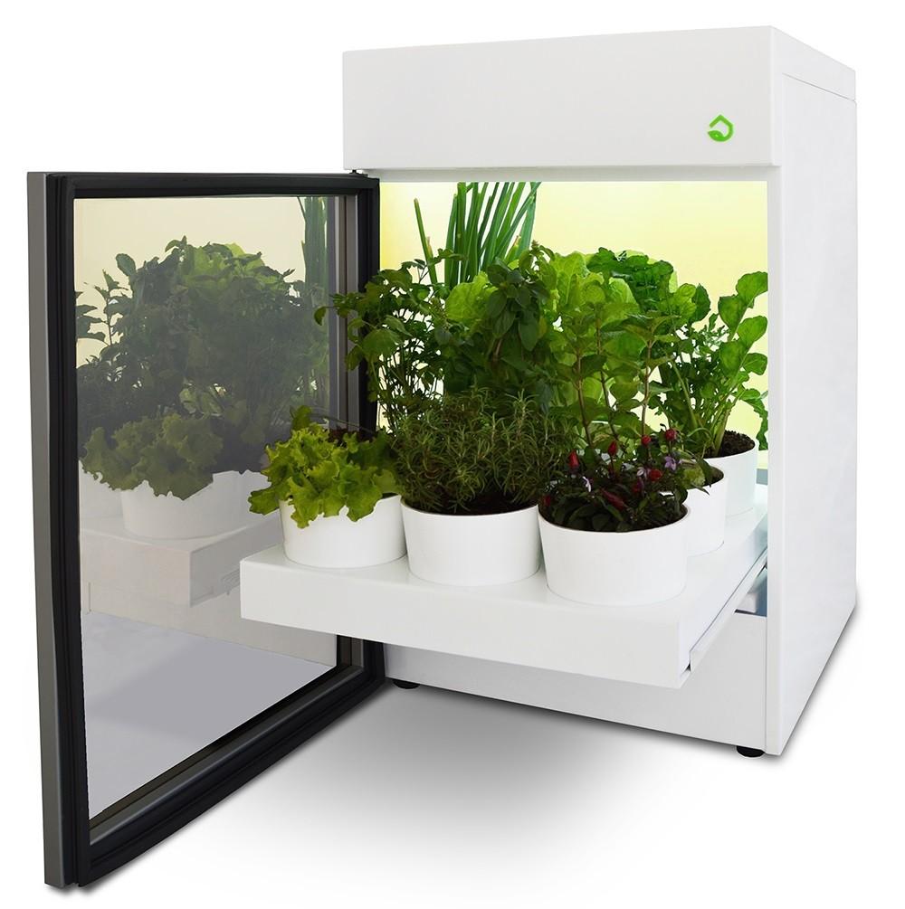 Estufa Doméstica Plantário Tradicional Branco - Sua Horta Dentro de Casa - 220V