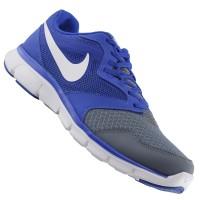 Tênis Nike Flex Experience RN 3 MSL 652852 - 404 Azul e Chumbo - 41