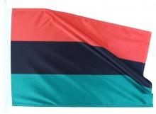 Pan-Africana