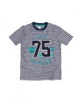 Imagem - Camiseta Infantil Hering Kids 5ckg1aen  - 055940