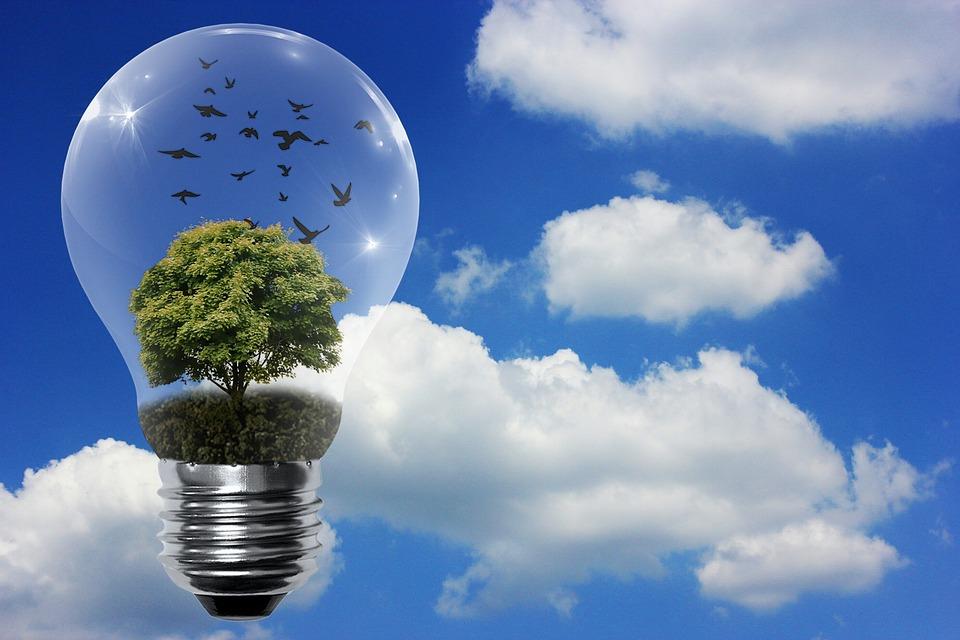 fontes de energia renovavel