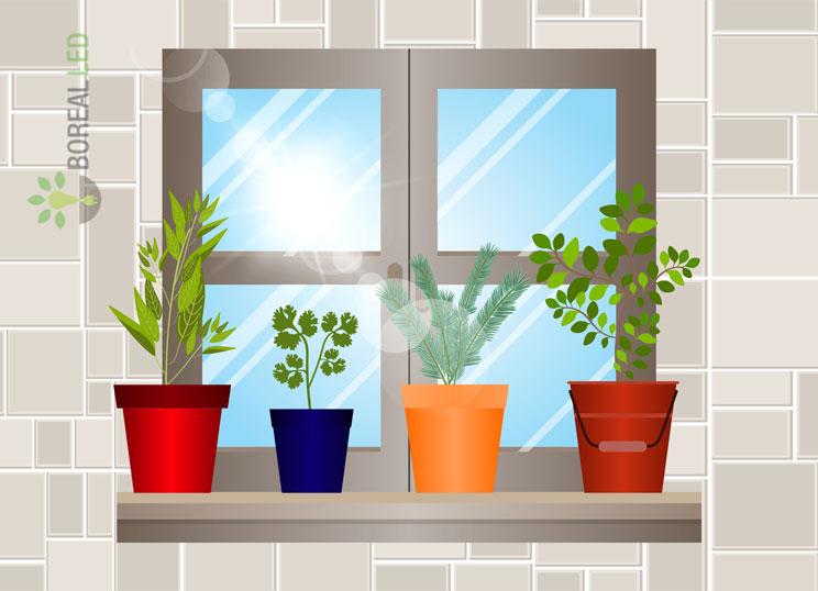 horta dentro de casa