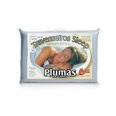 Imagem - Travesseiro Castor Sleep Pluma de Ganso - 100% Algodão - 1591752