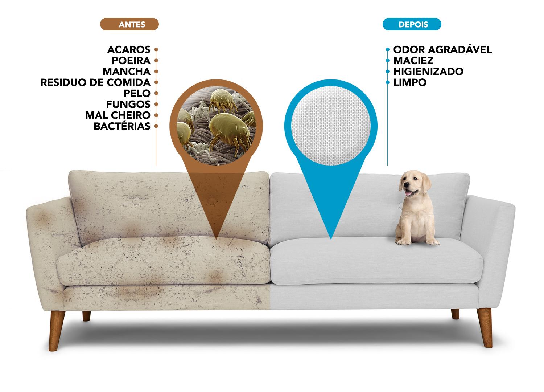 sofa limpo evita problemas de saude