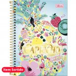 Caderno Espiral Capa Dura 1/4 Capricho - 96 Folhas (Pacote com 5 unidades)