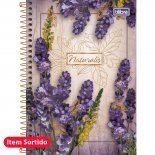Caderno Espiral Capa Dura 1/4 Naturalis - 96 Folhas (Pacote com 5 unidades)
