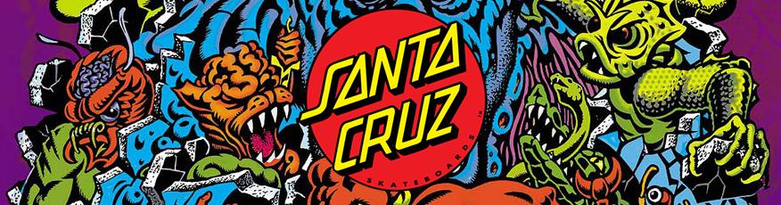 Banner Santa Cruz