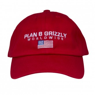 Imagem - BONÉ GRIZZLY x PLAN B WORLDWIDE DAD STRAPBACK - 16432003