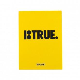 Imagem - DVD PLAN B TRUE - 15472003