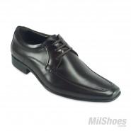 Sapato Democrata