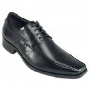Sapato Democrata Morgadio