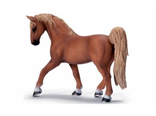 Cavalo Garanhão Tennessee