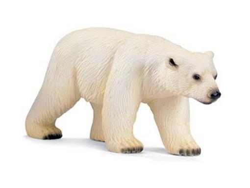 Urso Polar Femea