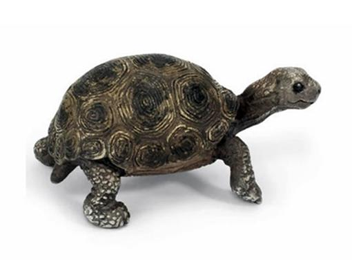 Tartaruga Jovem Gigante - Schleich