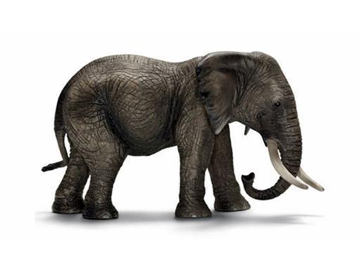 Elefante Africano Fêmea - Schleich