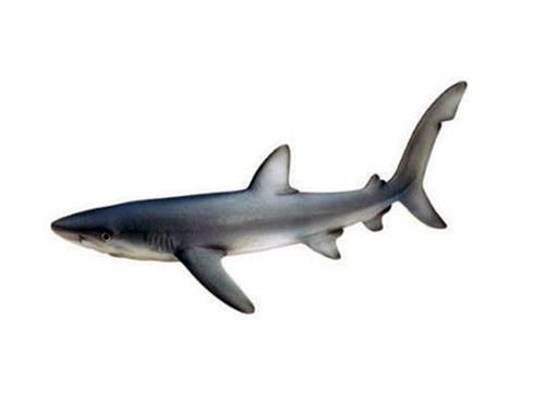 Tubarão Azul - 1:32