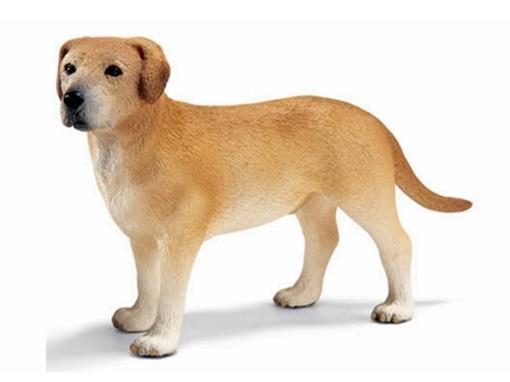 Cachorro Labrador Macho - Schleich