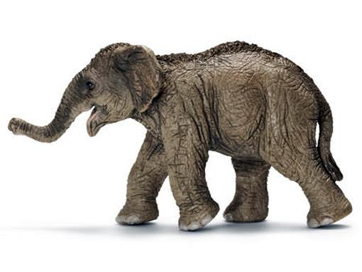 Elefante Asiático Filhote - Schleich