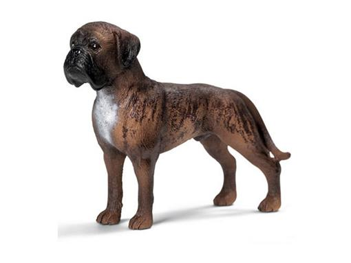 Cão Boxer Macho - Schleich