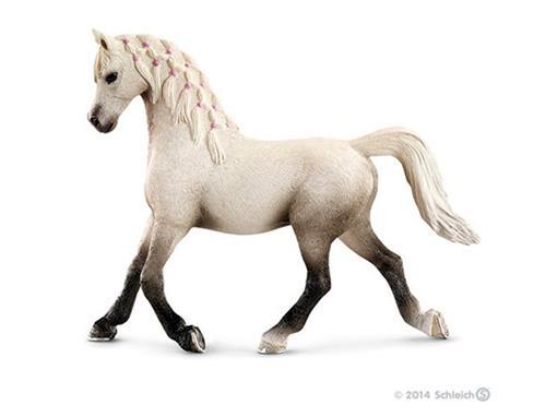 Égua Árabe