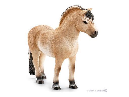 Cavalo Garanhão Fjord