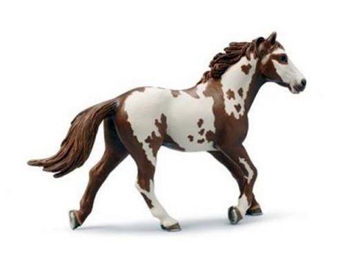 Cavalo Garanhão Pintado