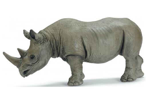Rinoceronte Africano Negro