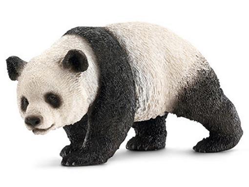 Panda Gigante Fêmea