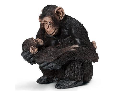 Macaco Chimpanzé Fêmea com Filhote