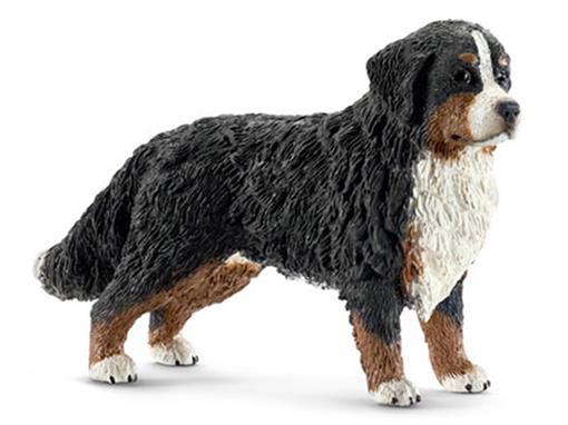 Cão Bernese (Montanhês) Fêmea - Schleich