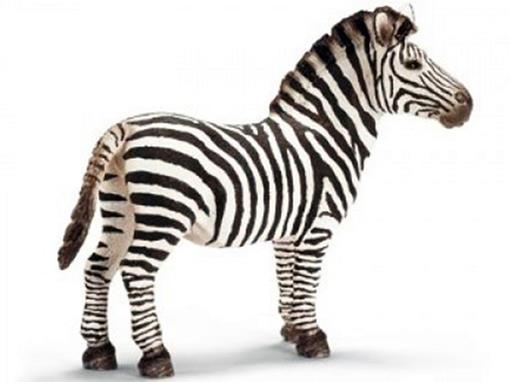 Zebra Macho - Schleich