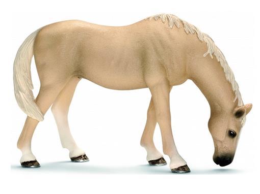 Cavalo Akhal-Teke - Schleich