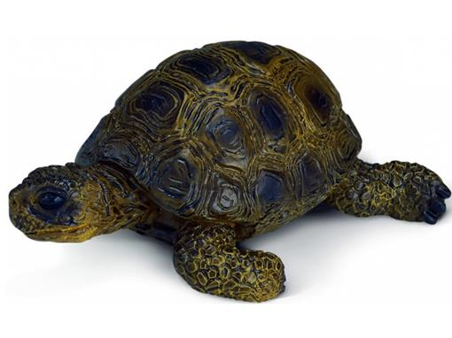 Tartaruga - Schleich