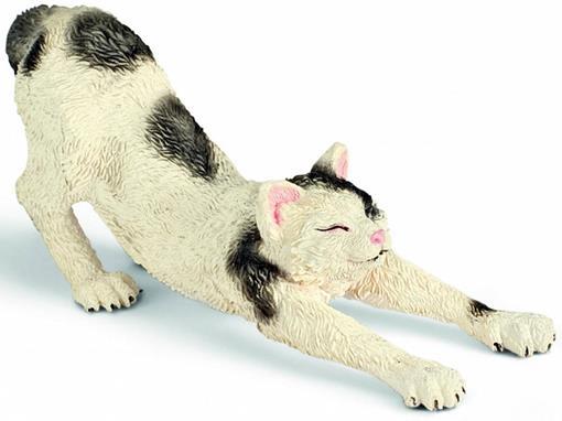 Gato Espreguiçando