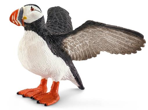 Pássaro Arau do Mar