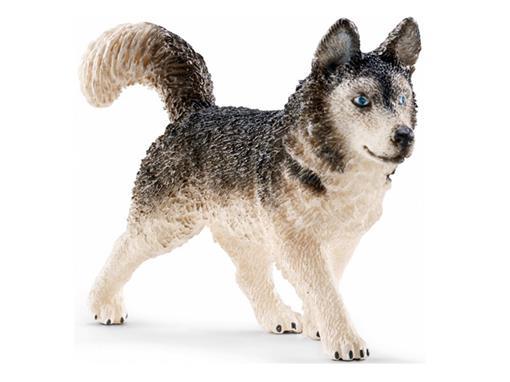 Cão Husky - Schleich