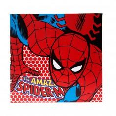 Imagem - Quadro canvas tela de 40x40cm - Homem-Aranha