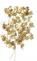 Mural Floral Dourado 100x80 cm