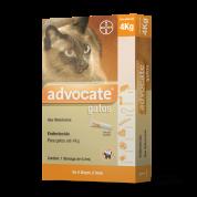 Anti Pulgas Advocate Bayer para Gatos Até 4Kg