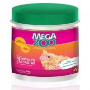Ração Papa para Filhotes de Calopsitas Megazoo - 500g