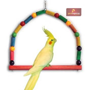 Brinquedo Poleiro Arco Colorido para Calopsitas