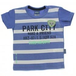 Camiseta Alakazoo Menino Listrada Estampa Park City 28845