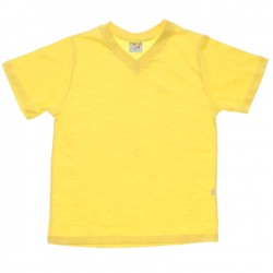 Camiseta Have Fun Infantil Decote V Flamê Básica Lisa 30219