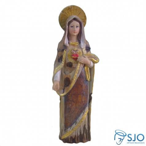 Imagem de resina Coração de Maria - 30 cm