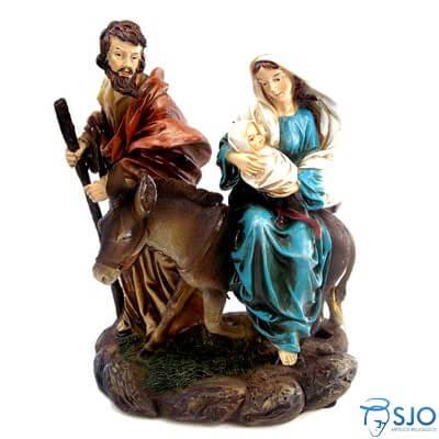 Imagem de Resina Nossa Senhora do Desterro - 25 cm