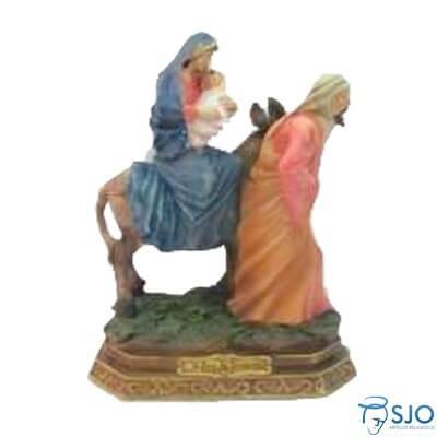 Imagem de Resina Nossa Senhora do Desterro - 42 cm