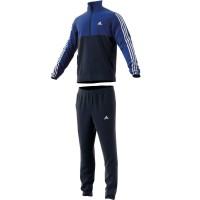 Agasalho Adidas Back2basics 3S